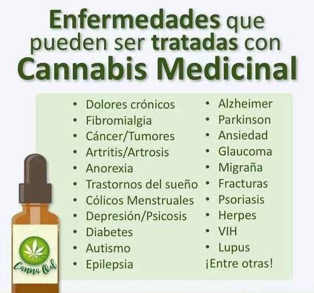 SABES QUE ES EL CBD (MARIHUANA MEDICINAL)